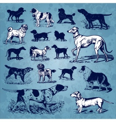 dogs vintage set vector image
