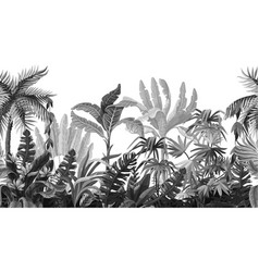 seamless border with jungle trees in monochrome vector image