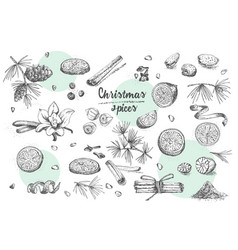 Set of hand drawn christmas winter spices pattern vector