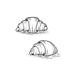 couple croissants in hand drawn engraving style vector image