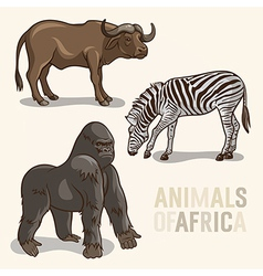 African Animals set3 vector image vector image