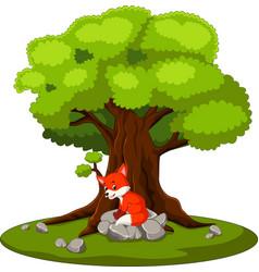 Fox sitting on stone vector