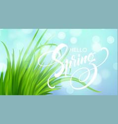 frash spring green grass background vector image