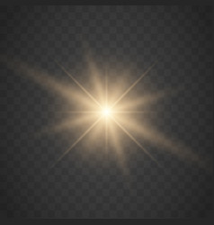 glowing light stars with sparkles vector image