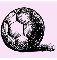 handball ball vector image