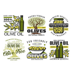 olive oil and vegetables product labels vector image