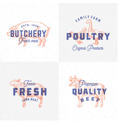 premium quality vintage meat and poultry labels vector image
