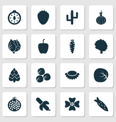 food icons set with tropical fruit cauliflower vector image