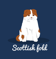 Scottish foldcute cat on blue background vector