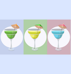 summer cocktail fruits set fresh drink vector image