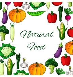 Vegetables poster natural vegetarian food veggies vector