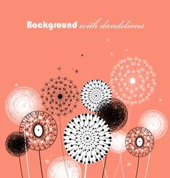 Beautiful dandelions vector image