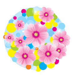 pink flowers cosmos circle vector image vector image