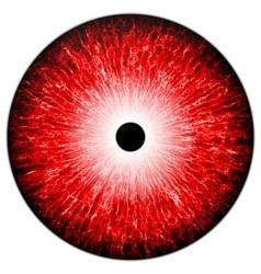 Red eye vector image