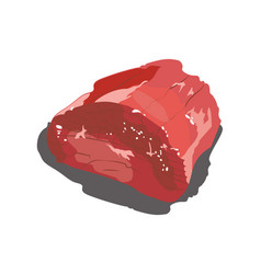 a piece fresh meat meat product on a white vector image