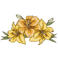 bouquet of three yellow lily flowers hand drawn vector image