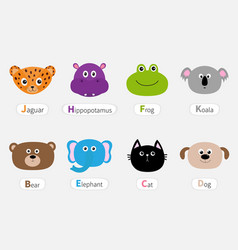 Cat jaguar dog hippopotamus elephant bear frog vector