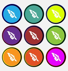 Feather icon sign Nine multi colored round buttons vector image