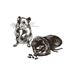 field mouse or rat character standing beside the vector image