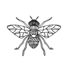 Fly stencil pattern vector