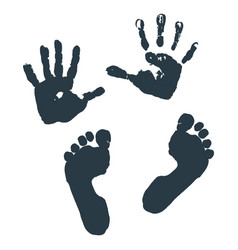 Imprint children s palms and feet vector