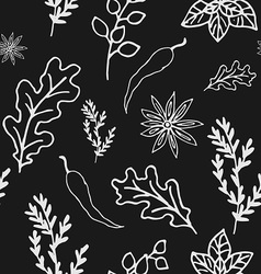 Seamless Doodle patterns herbs and spices vector image