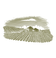 Woodcut Vineyard Landscape vector