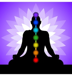 yogi with chakras vector image