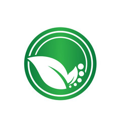 Logos of green leaf ecology vector