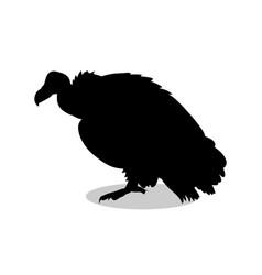 vulture bird black silhouette animal vector image