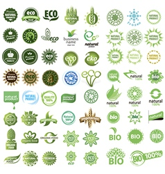 Collection of eco sign vector