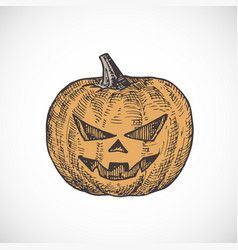 hand drawn colorful halloween scary pumpkin vector image