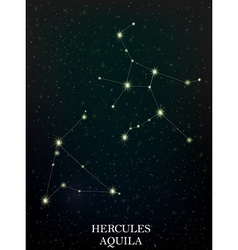 Hercules and Aquila constellation vector