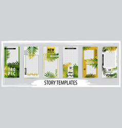 trendy editable template for social tropical vector image