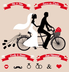 Wedding couple on tandem bicycle set vector
