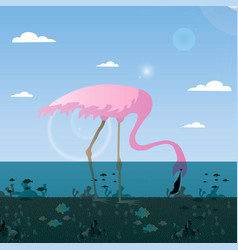 With flamingo birds on a lakesurrounded fish vector