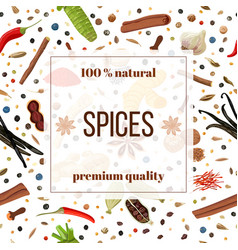 cooking spices seamless pattern set vector image vector image