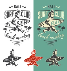 Monkey surfing club vector image