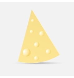 piece of cheese on an isolated white background vector image vector image