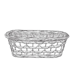 Basket sketch isolated on white background vector image