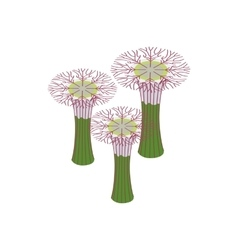 Botanical garden in Singapore icon vector