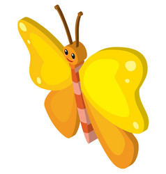 Butterfly flying in 3d design vector