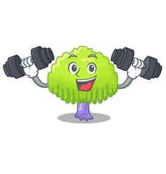 Fitness isolated weeping willow on the mascot vector
