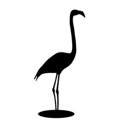Flamingo black silhouette vector