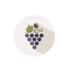 grapes icon with shadow on a beige circle fall vector image