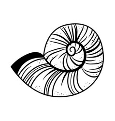 sea snail icon vector image