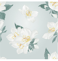 Seamless texture jasmine flowers and buds twigs vector