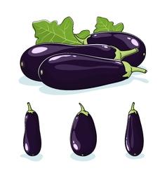 Vegetable Eggplant Edible Fruit vector