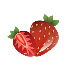 red berry strawberry and a half of strawberry vector image