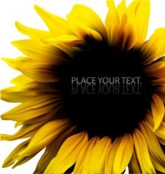 sunflower background frame vector image